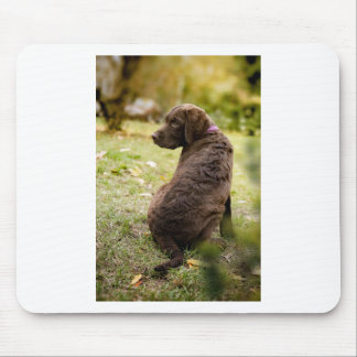Mousepad filhote de cachorro