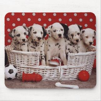 Mousepad Filhotes de cachorro Dalmatian em uma cesta