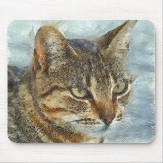 Mousepad Fim impressionante do gato de gato malhado acima