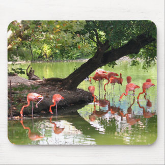 Mousepad Flamingos cor-de-rosa