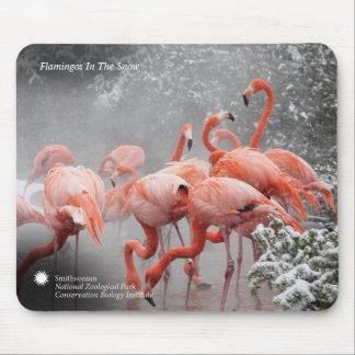 Mousepad Flamingos de Smithsonian | na neve