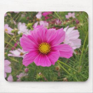 Mousepad Flor cor-de-rosa bonita do cosmos
