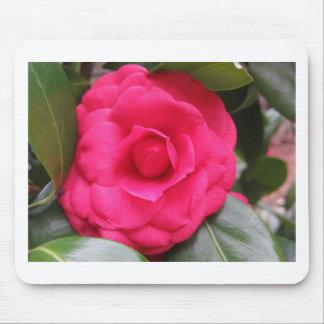 Mousepad Flor vermelha do japonica Rachele Odero da camélia