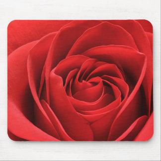 Mousepad Flor vibrante da rosa vermelha
