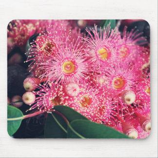 Mousepad Flores bonitas da árvore de porca da goma