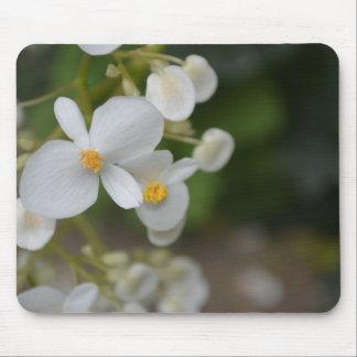 Mousepad Flores brancas do bebê