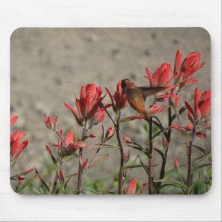 Mousepad Flores cardinais do colibri