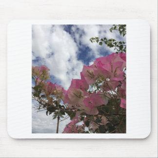 Mousepad flores cor-de-rosa contra um céu azul