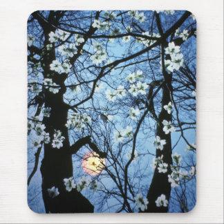 Mousepad Flores do Dogwood com por do sol