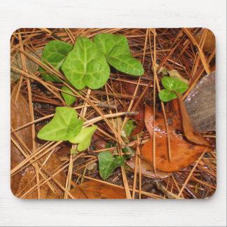 Mousepad Folhas chuvosas da hera inglesa das árvores de