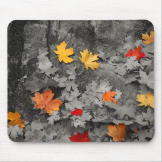 Mousepad Folhas coloridas em um mundo preto e branco