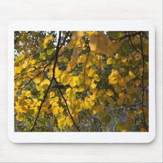 Mousepad Folhas de outono amarelas e verdes