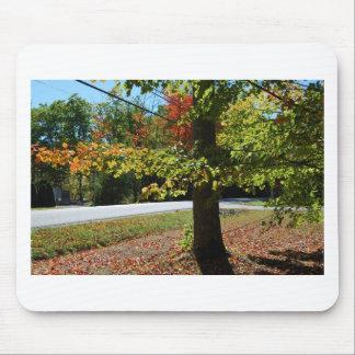 Mousepad Folhas de outono em Maine