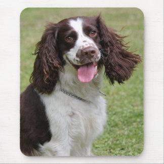 Mousepad Foto bonita do cão do Spaniel de Springer inglês,