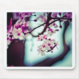 Mousepad Foto Pastel da flor de cerejeira
