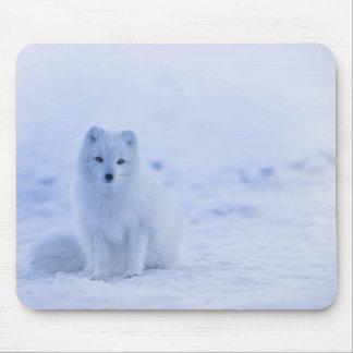 Mousepad Fox ártico de Islândia