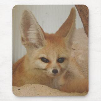 Mousepad Fox de Fennec