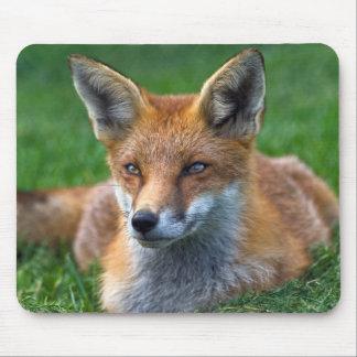 Mousepad Fox vermelho Mousemat
