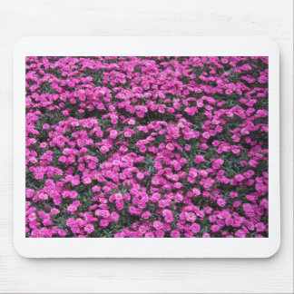 Mousepad Fundo natural de flores roxas do cravo