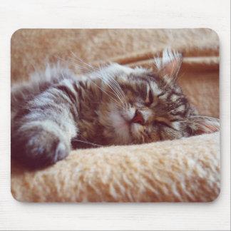 Mousepad Gatinho do sono
