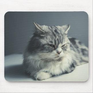 Mousepad Gatinho macio