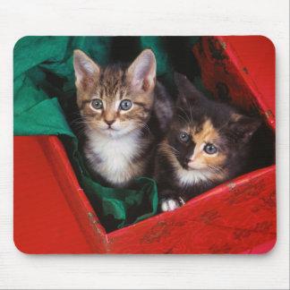 Mousepad Gatinhos do Natal