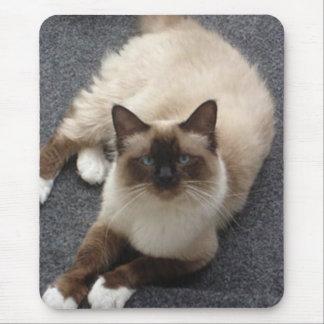 Mousepad Gato bonito de Birman