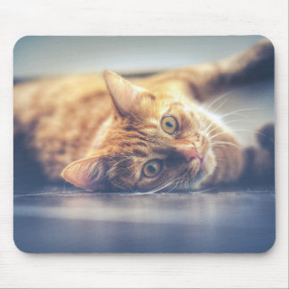 Mousepad Gato brincalhão adorável
