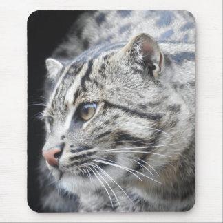 Mousepad Gato da pesca