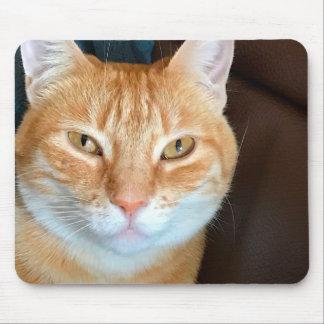 Mousepad Gato de gato malhado alaranjado