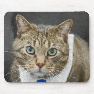 Mousepad Gato de gato malhado marrom verde-eyed bonito que