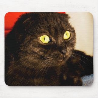 Mousepad Gato de relaxamento de Munchkin
