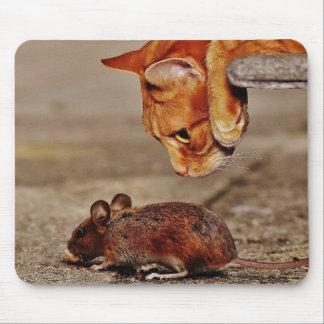 Mousepad Gato de tigre alaranjado com rato
