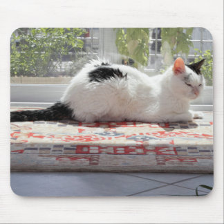 Mousepad Gato do gatinho que relaxa em uma janela