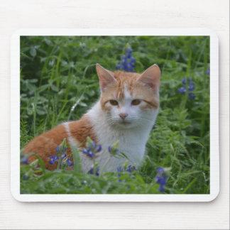 Mousepad Gato malhado alaranjado e branco