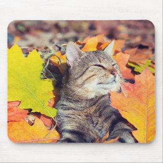 Mousepad Gato malhado que Basking na folha