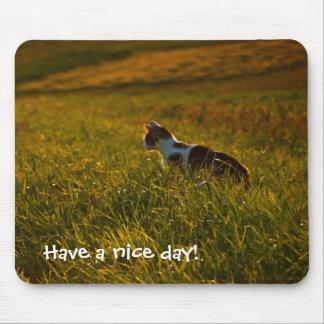 Mousepad Gato que anda no prado