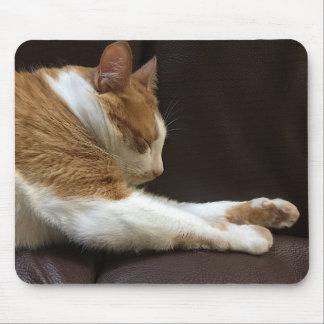 Mousepad Gato que dorme no sofá