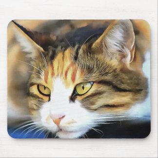 Mousepad Gato satisfeito