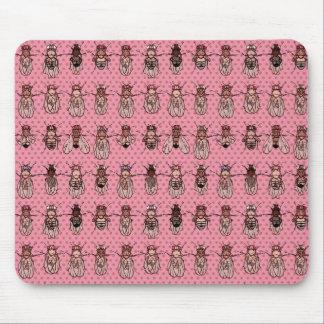 Mousepad Genética da mosca de fruta da drosófila - mutantes