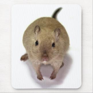 Mousepad Gerbil Mousemat