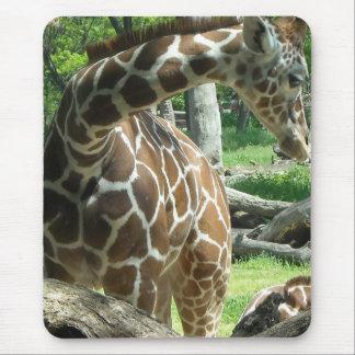 Mousepad Girafa gracioso