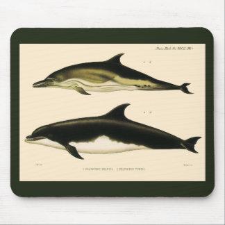 Mousepad Golfinhos do vintage, animais marinhos e mamíferos