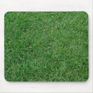 Mousepad Grama verde do verão, jarda, foto do gramado 099
