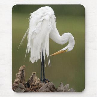 Mousepad Grande Egret