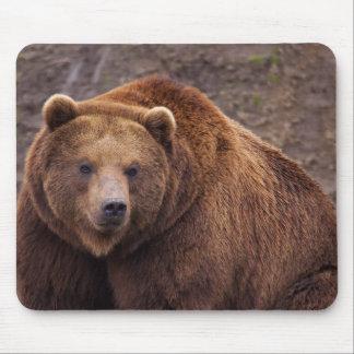 Mousepad Grande urso de Kodiak
