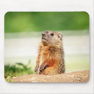 Mousepad Groundhog novo