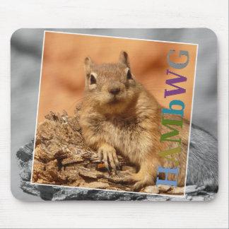 Mousepad HAMbyWG - tapete do rato - esquilo famoso