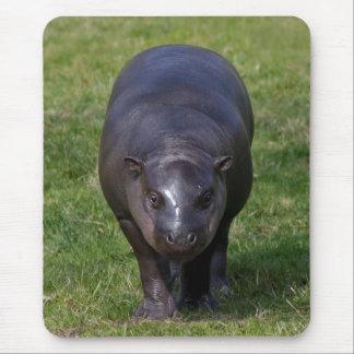 Mousepad Hipopótamo Mousemat do bebê