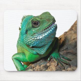 Mousepad Iguana verde